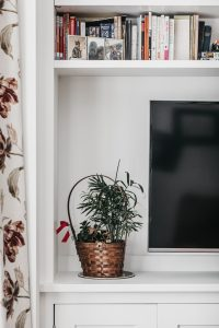 TV shelf with plant on top of it